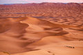 Royalty Free Stock Photos Sahara Desert