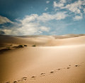 Sahara dunes in morocco erg chebbi Royalty Free Stock Photography