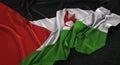 Sahrawi Arab Democratic Republic Flag Wrinkled On Dark Backgroun