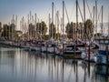 Sail boats and yachts anchored in marina Royalty Free Stock Photo