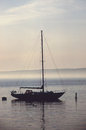 Sailboat amd seagull with mist on calm waters sails down and flying by in background Stock Photo