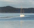 Sailboat Docked in the Water Royalty Free Stock Photo