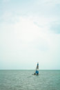Sailboat the the enjoy activity in summer Royalty Free Stock Photography