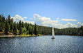 Sailboat floating along the lake jackson near forest of colter bay village Stock Photo