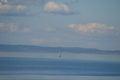 Sailboat on puget sound seattle washington a lone drifts across near bainbridge island march Royalty Free Stock Photo