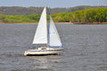 Sailboat Sailing Royalty Free Stock Photo