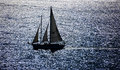 Sailboat in  Shimmering Sea of Reflections in San Francisco Bay Royalty Free Stock Photo