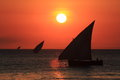Sailboat at sunset in the zanzibar sea with sailboats Stock Photography