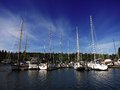 Sailboats docked in marina view of a with reflection water Stock Image