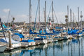 Sailboats in the harbor many with blue sail covers docked oceanside southern california Stock Images