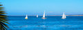 Sailboats in Monterey Bay Royalty Free Stock Photo