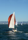 Sailboats in the san francisco bay sailboat regatta california Royalty Free Stock Images
