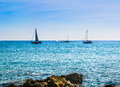 Sailboats under the sun Royalty Free Stock Photo