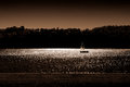 Sailing boat floating on the lake photos edited in a graphics editor Stock Images