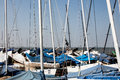 Sailing boat masts Royalty Free Stock Photo