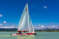 Sailing boat in the wind Royalty Free Stock Image