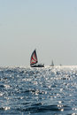 Sailing boats on adriatic sea croatia Stock Images