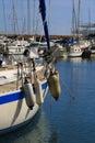 Sailing Boats In The Marina