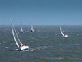 Sailing boats in strong wind Royalty Free Stock Image