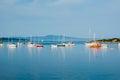 Sailing boats, Vancouver Island, Canada Royalty Free Stock Photo