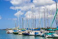Sailing club marina group of sailboats docked in a Stock Photography