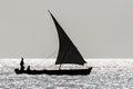 Sailing dhow at sunset Royalty Free Stock Photo