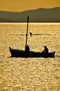 Sailing on golden field Royalty Free Stock Photo