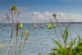 Sailing lessons in small boats france Stock Photography