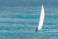 Sailing sloop with masthead spinnaker ii a races across the caribbean sea Royalty Free Stock Image