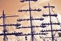 Sailors at the mast of a tall ship regatta. Royalty Free Stock Photo