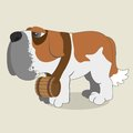 Saint bernard cartoon illustration of dog Royalty Free Stock Images