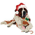 Saint bernard in hat santa claus dog on white background Stock Photos
