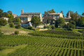 Saint emilion vineyard landscape france south west of Royalty Free Stock Photo
