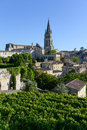 Saint emilion vineyard landscape france south west of bordeaux Royalty Free Stock Images
