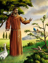 Saint Francis Royalty Free Stock Image
