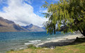 Saint omer park in queenstown new zealand Stock Images