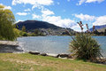 Saint omer park in queenstown new zealand Royalty Free Stock Photos