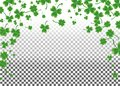 Saint Patrick`s Day greeting card with sparkled green clover lea Royalty Free Stock Photo