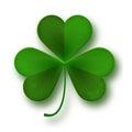 Saint Patricks Day shamrock leaf symbol isolated on white
