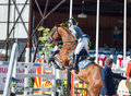 Saint petersburg july olga chechina on adelheid in the csi w csiyh international jumping grand prix fei world cup competition cm Royalty Free Stock Image