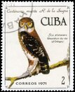 Saint Petersburg, Russia - November 12, 2020: Postage stamp issued in the Cuba with the image of theCuban Pygmy Owl, Glaucidium