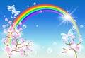 Sakura blossom and rainbow Royalty Free Stock Photo