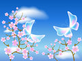 Sakura blossom and transparent butterflies Royalty Free Stock Photo