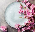 Sakura branches around gray plate, stone background. Japanese food concept. Top view, copy space Royalty Free Stock Photo
