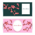Sakura, Cherry Blossoming Tree Vector Card Illustration. Set of Beautiful Floral Banners, Greeting cards, Wedding Invitations, Bac Royalty Free Stock Photo