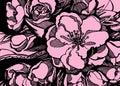 Sakura flower pink leaves twigs graphics