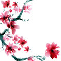 Sakura flower watercolor and ink illustration in style sumi e u sin oriental traditional painting seamless pattern Stock Image