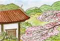 Sakura, Japanese cherry tree blossoms and traditional Japanese house with red roof, watercolor sketch illustration