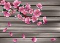 Sakura on old wooden boarderes