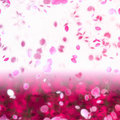Sakura Snowfall Petals Abstract Background Royalty Free Stock Images